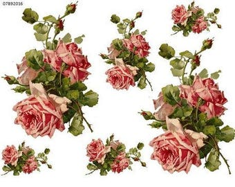 Incroyable XL ViNTaGe KLeiN DouBLe PinK CaBbaGe RoSe SWaGs SHaBbY DeCaLs ~FurNiTuRe  SiZe~