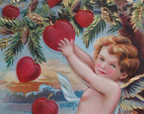 Antique John Winsch Valentine's Postcard