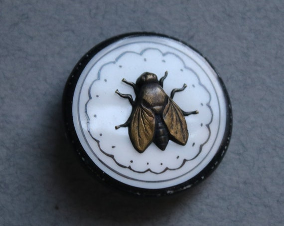 Victorian Picture Button with Metal Fly