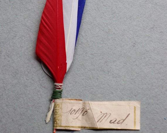 Antique French Patriotic Feathers, Circa 1915