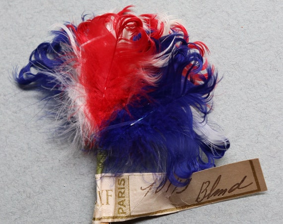 Antique French Patriotic Feathers