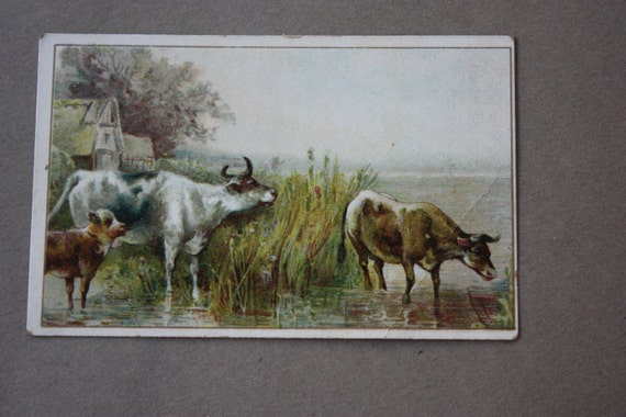 S.B. Thing and Co.'s Antique, Victorian Trade Card for Fall and Winter of 1894 and 1895