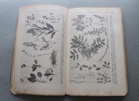Album de la Nouvelle Flore by Gaston Bonnier