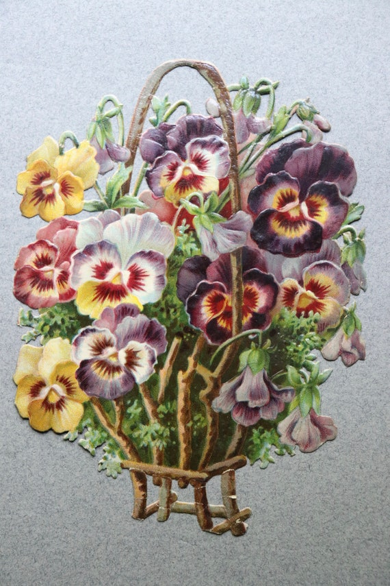 Antique Pansies, French Chromolithograph