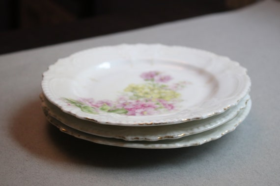 Antique, Shabby Chic Set of Three Floral Patterned Plates