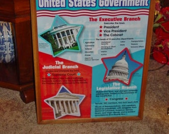 FREE SHIPPING United States Government custom framed print solid rustic cedar oak finish wall hanging display deep profile