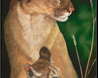e0467fa976be Cougar   Cub 4.5