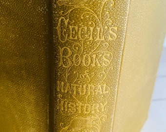 1885 - Cecil's Book of Natural History - Antique Book - Entomology - Biology - Illustrated