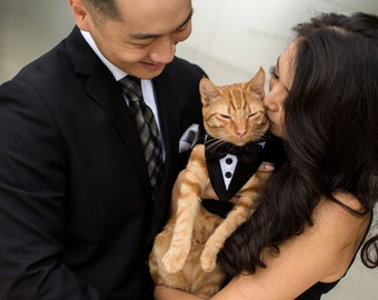 Bow Tie Curious Cats And Tan Adjustable Bowtie for Wedding Party