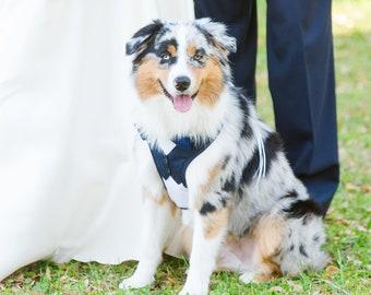 Large Navy Dog Harness wedding tuxedo.  formal harness dog wedding tuxedo , dog harness, dog wedding harness, dog formal attire , bow tie