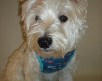 blue  nautical dog harness, soft mess comfort fit dog harness, adjustable dog harness , dog tags . dog leash , dog bandana,