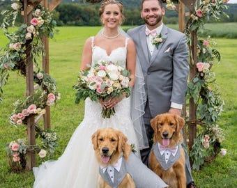 Dog wedding attire etsy large dog grey wedding tuxedo dog formal wear dog wedding attire dog wedding junglespirit Image collections