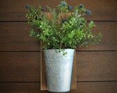 Wall Planter with Greenery Farmhouse Rustic Cottage Country Decor Country Living Hanging Sconce Galvanized Pail with Blackberry
