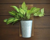 Wall Planter with Greenery Farmhouse Rustic Cottage Country Decor Country Living Hanging Sconce Galvanized Pail with Vanilla Orchid