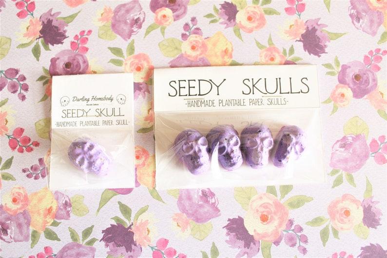 Plantable Paper Skulls / Seed Bombs / Pastel Purple Seedy image 0