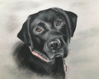 We do custom pastel pet portraits