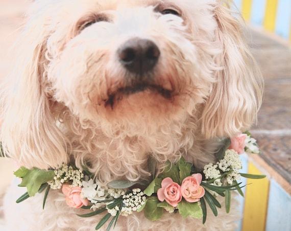Dog Flower Collar | Dog Wedding Flower Collar | Dog flower wreath | Dog wedding collar | Wedding decor | Dog of Honor | Dog wedding Sign