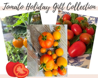 Tomato Seeds Holiday Gift Collection, Garden gifts, Cherry Tomatoes, Heirloom seeds, Organic seeds, Sweet tomatoes, Red tomatoes