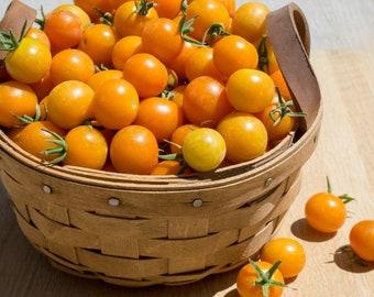 Sun Gold Tomato Seeds, Orange Cherry Tomato seeds, Orange tomatoes, Garden gifts, yellow Tomatoes, Organic seeds