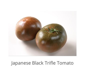 Japanese Black Trifle Tomato Seeds, Heirloom Tomato Seeds, Organic seeds, Sweet Tomatoes, Black Tomatoes, Gardener Gifts