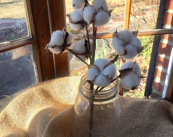 1 Single Cotton Stem, cotton decor, cotton boll stems, rustic cotton, Farmhouse decor, DIY Rustic wedding, Vintage Cotton Decor