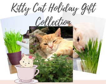 Cat Holiday Gift Collection Dried Catnip Leaves, Catnip tea, Cat mom gifts, Cat crafts, Cat toys, Gifts for Cats, Gardening Gifts