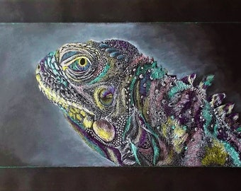 Iguana:  Colored Pencil and White Charcoal Original Drawing