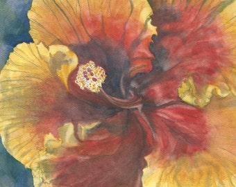 Hibiscus:  Original Watercolor
