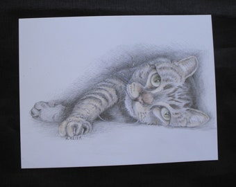 Original cat portrait from a photo in pencil and pencil crayon on heavy bristol board