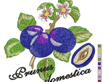 Damsons embroidery Machine Embroidery Design