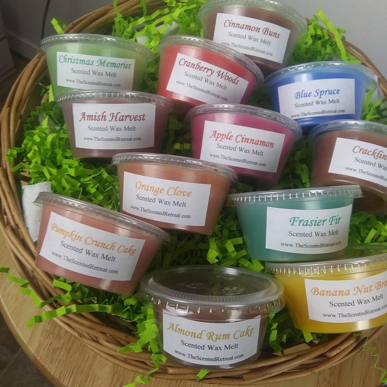 Wax Melt Tart Sampler Cranberry Apple Cinnamon Pumpkin Pine image 0