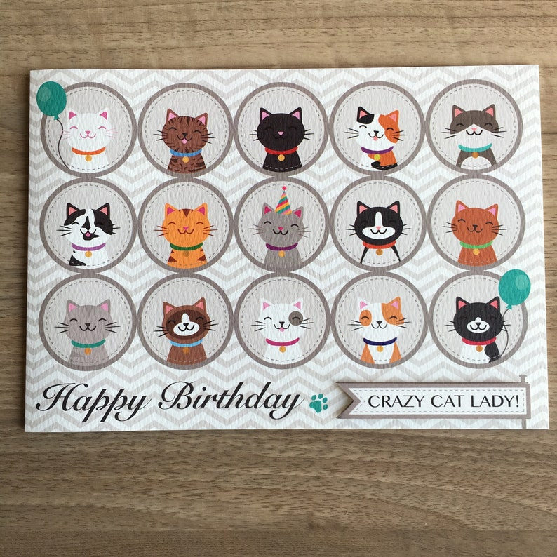 Happy Birthday CRAZY CAT LADY Greetings Card Cat Themed