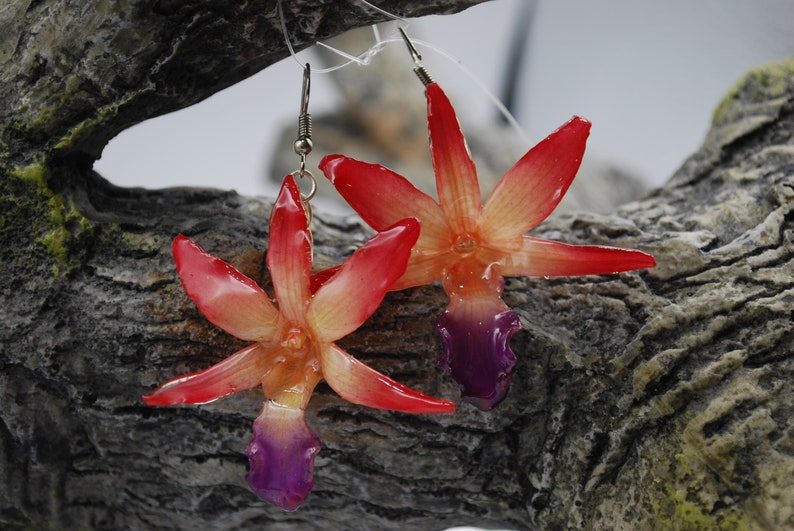 Draconis Dendrobium Orchid Earring  Orchid image 0