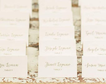 Wedding Place Cards, Escort Card Weddings, Traditional Calligraphy Script, Wedding Table Cards, Custom Place Card, Seating Chart | Adventure