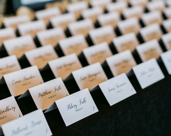 Wedding Place Cards, Escort Card Weddings, Tradtional Calligraphy Script, Wedding Table Cards, Custom Place Cards, Seating Chart - Romantic