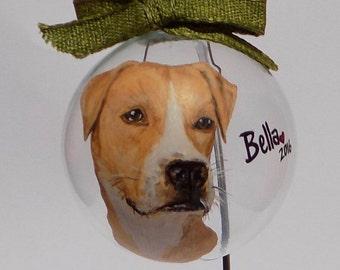 Single Custom Hand Painted Glass Pet Ornament
