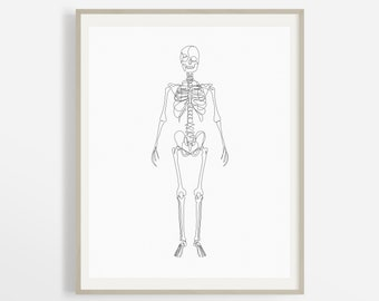 Full Human Skeleton Body Artwork, Abstract Skeletal System Printable, Minimalist Medical Wall Art, Chiropractor Bone Art Print, Doctor Art.