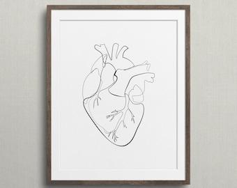 One Line Heart Drawing Print, Minimalist Medical Line Art, Human Anatomy Wall Art, Abstract Human Organ Artwork, Anatomical Art Print, Decor