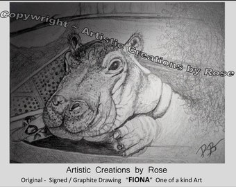 Fiona the hippo's birthday - Cincinnati Zoo - Art - gift - Fiona the Hippo - Fan Art -  Fiona, hippopotamus - Fan art - Original art,print