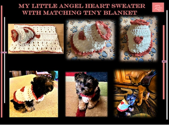 sweater, pink, morkie,  puppy, 2 lb, small dog, xx small, toy dog,   3lb,4lb,   puppy, blanket