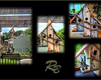Birdhouse - cool birdhouses - bird condo -  - birdhouses -  garden - mother gift -  wife gift - grandmother gift,painted flower pot