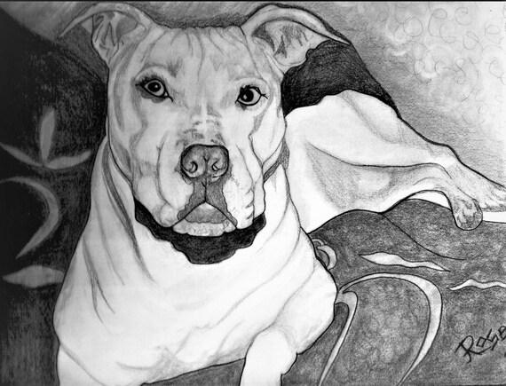 dog,pet portraits, famous, fiona hippo, pandas, fan art, heres johnny,  jack nicholson, Jason Mamoa, Original art, print, Graphite,