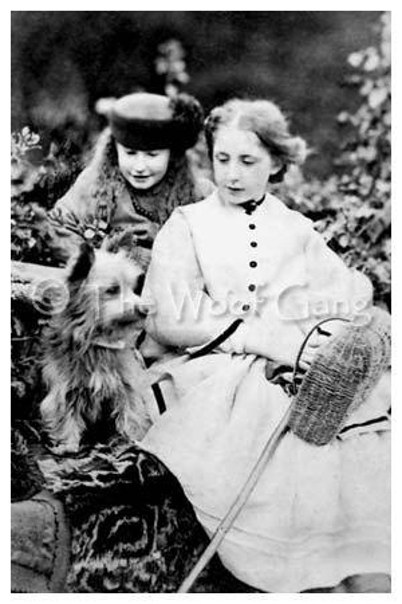 Two girls with Cairn terrier Scotland c. 1915 Vintage Photo image 0