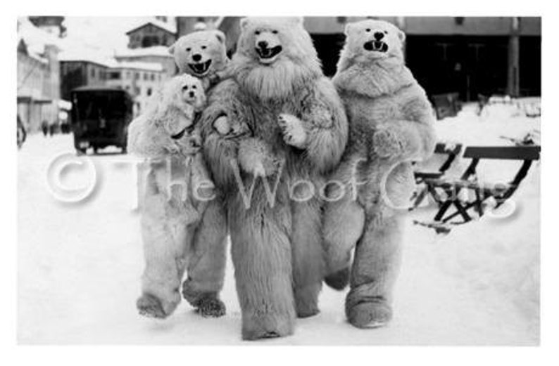 Poodle with Revelers in Polar Bear Costumes Berlin 1929 image 0