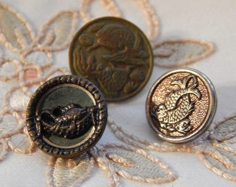 Fish - Antique Picture Buttons - 3 Different