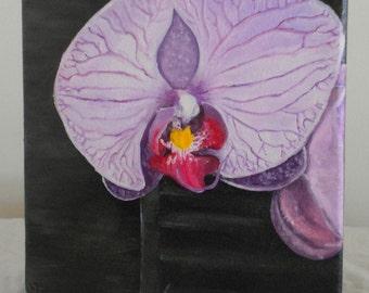 """Original Oil Fine Art Purple Orchid Small  8"""" by 10"""""""