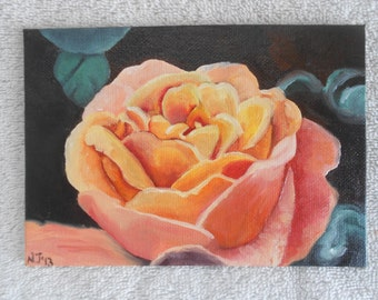 "Original Oil Fine Art Orange Pink Rose Flower Small 5"" by 7"""