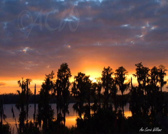 Cypress Lake at Sunset (PR) (canvas)