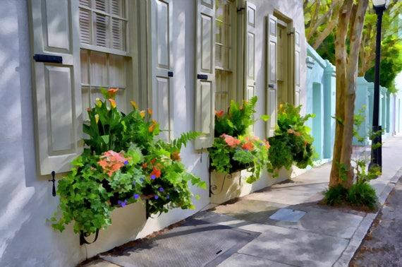Spring time in Charleston