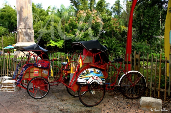 Red bicycles and rickshaw (PR) (on canvas)